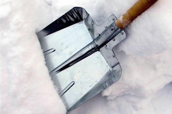 Snow Shovel Сhallenge: Олег Нилов бросает вызов на уборку снега Игорю Албину и другим чиновникам