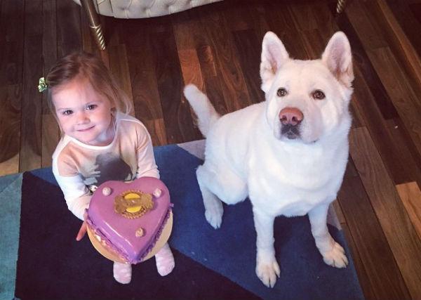 Сергей Лазарев поздравил с Днем всех влюбленных собаку Глюкозы