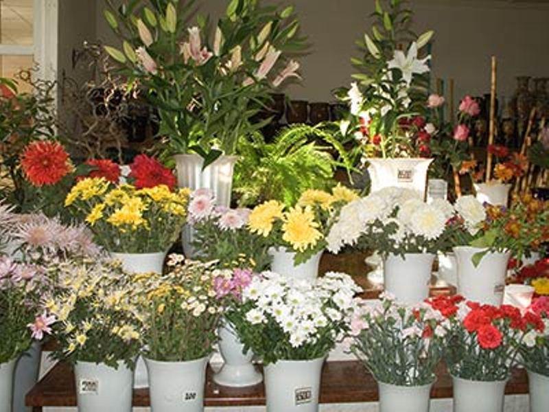 В День влюбленных и на 8 Марта цены на цветы будут