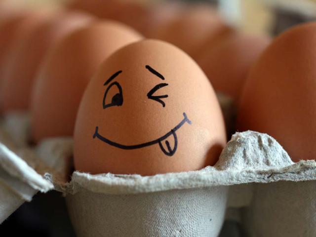 Максимальные цены на яйца, сахар и капусту устанавливать не будут
