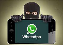 Голландец разработал программу для слежки за пользователями WhatsApp