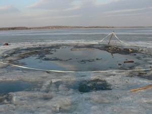 "Место падения Чебаркульского метеорита. Фото ""Космопоиска"""