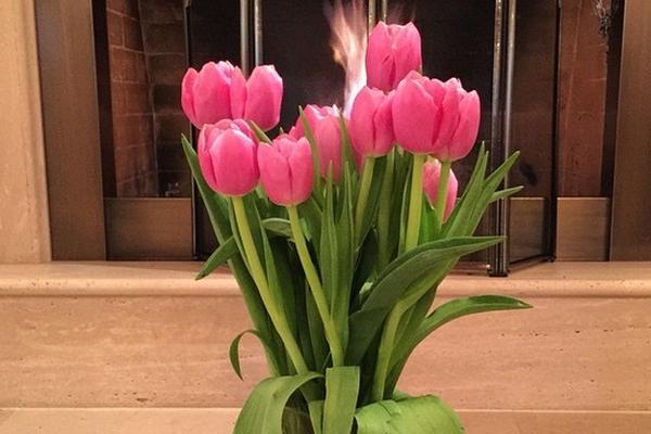 Дмитрий Медведев подарил россиянкам букет тюльпанов