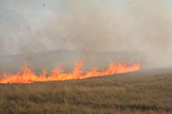 Женщина погибла, защищая село от степного пожара