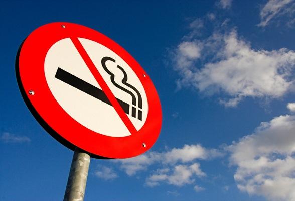 Российский союз молодежи попросил Госдуму запретить курение за рулем