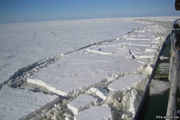 Уплывшую на льдине малышку нашли мертвой
