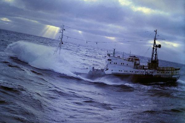 дальний восток рыболовное судно
