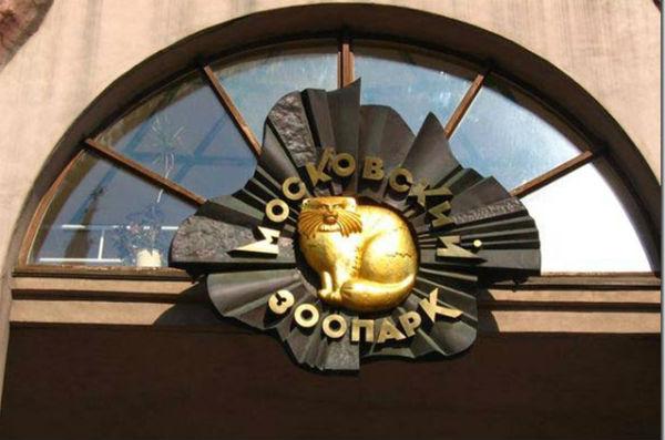 В Московском зоопарке отказались усыплять старых животных