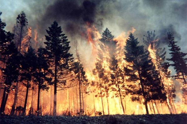 По причине пожаров в Забайкалье погибли 3 человека