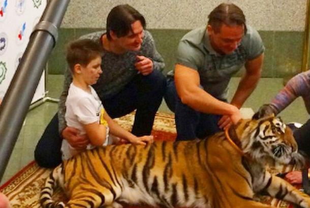 Братья Запашные познакомили Ваню Воронова, раненого в Донбассе, с настоящим тигром