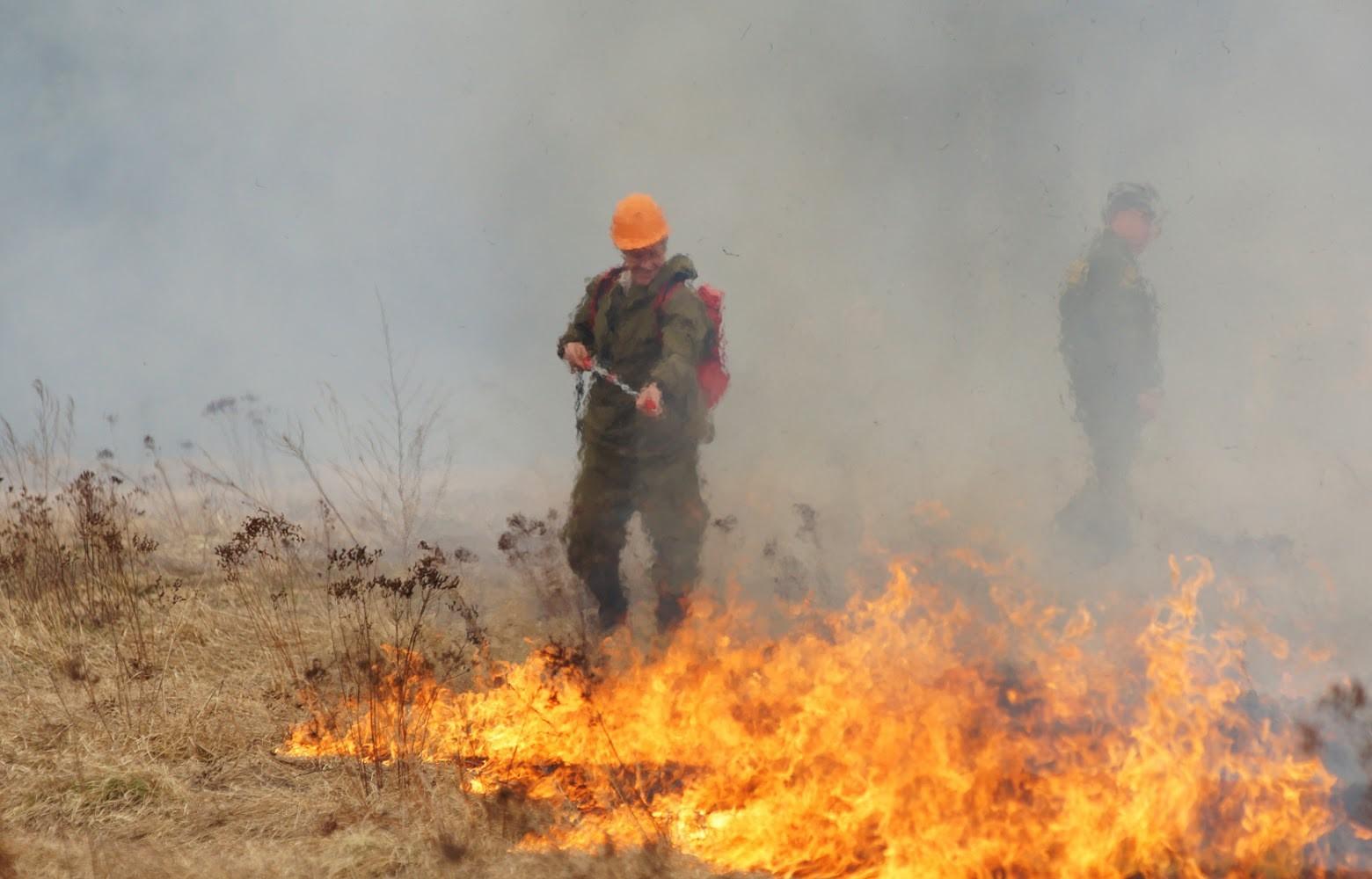 Более 5 тысяч человек тушат пожары в Хакасии