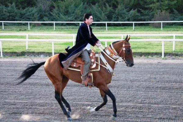 Президент Туркмении стал первым Народным коневодом страны