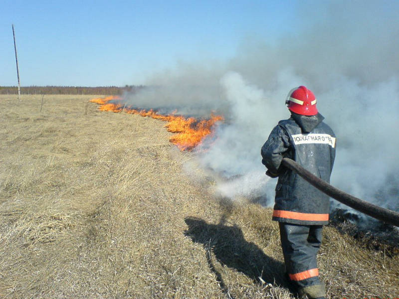 В Свердловской области горят жилые дома из-за пала травы