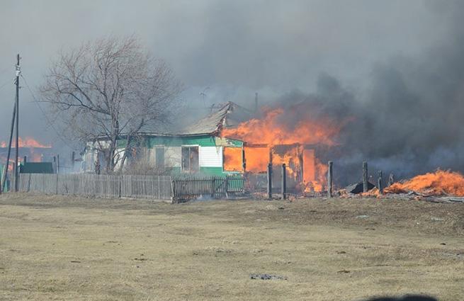 По делу о пожарах в Хакасии арестован глава Ширинского сельсовета