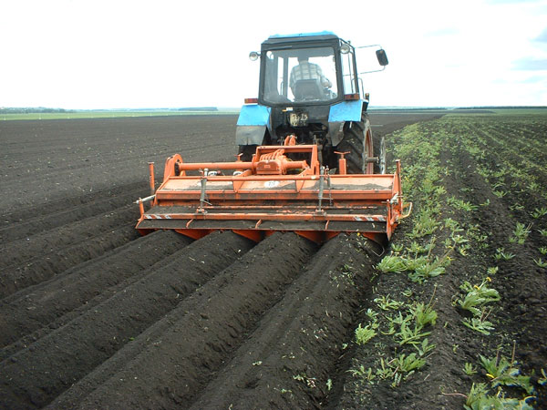 Минсельхоз раздаст субсидии фермерам авансом