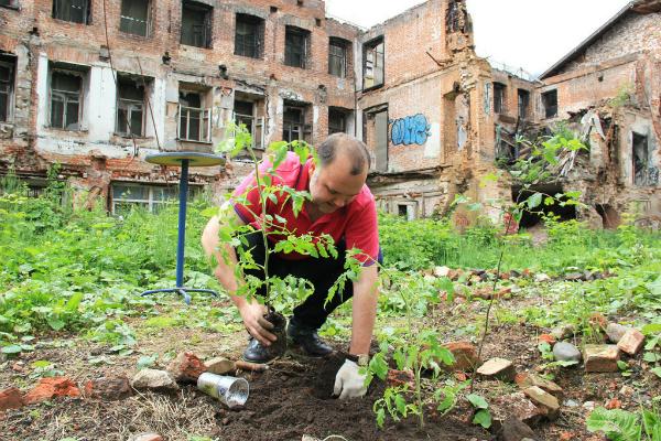Жители Екатеринбурга просят у Ройзмана огороды