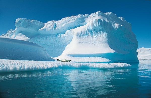 Ученые подсчитали, что Арктика может «растаять» через 25 лет