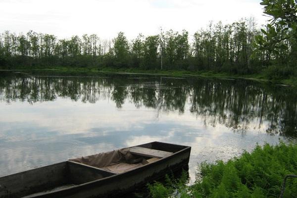 Тело мужчины с 60 ножевыми ранениями нашли в озере под Волгоградом