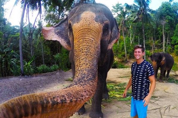 Слон отобрал у мужчины камеру и сделал с ним селфи