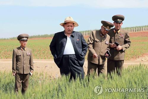 Азиаты не могут оторвать глаз от жиреющего Ким Чен Ына