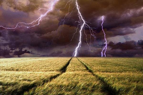 Молния убила пастуха из Волгоградской области
