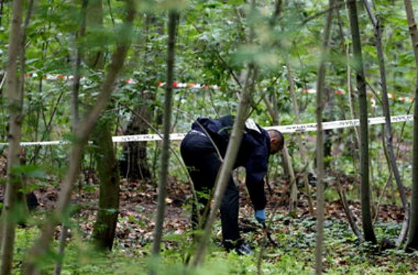Тело погибшего в ДТП нашли спустя 10 дней после аварии