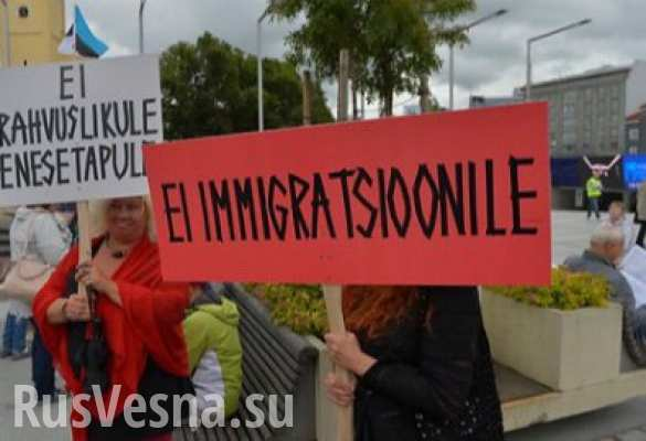 Эстонцы гонят средиземноморских мигрантов из страны