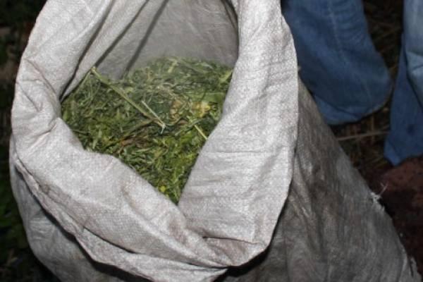 Якутские полицейские нашли в багажнике Toyota мешок конопли