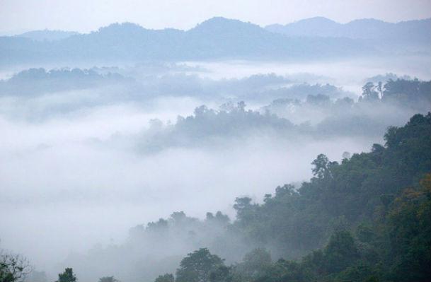23 военнослужащих погибли в авиакатастрофе в Лаосе