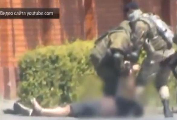 Опубликовано видео бойни в Мукачево