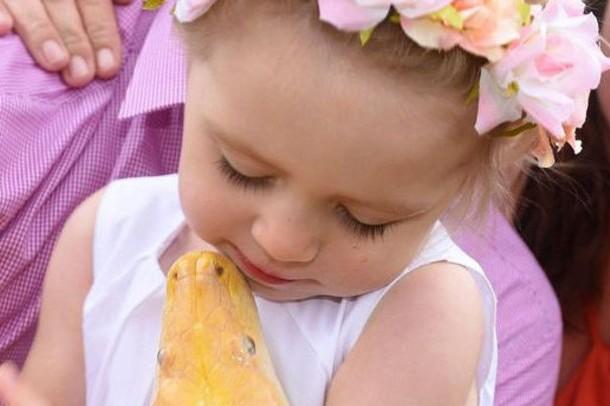 Интернет обсуждает фото 2-летней девочки, целующей огромного питона