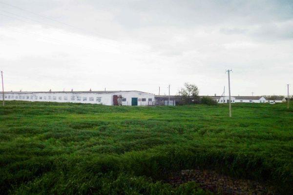Двое рабочих в Калмыкии зарезали семью из Дагестана