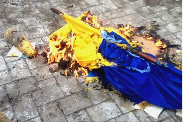 Украинец обматерил свой флаг и устроил его публичную казнь