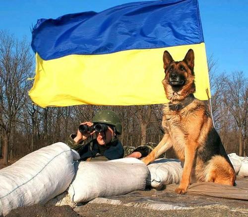 украина25
