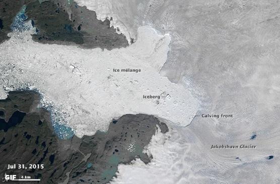 Уникальные фото таяния льда у Гренландии сделали со спутника