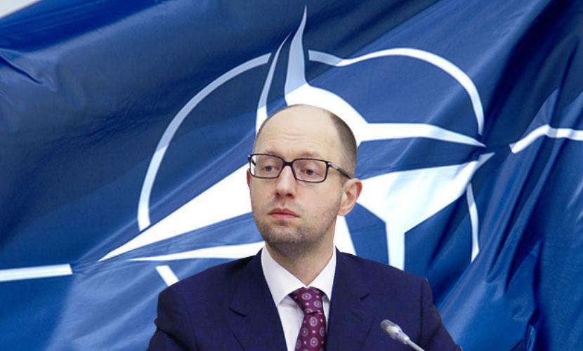 Яценюк: Украина вступит в НАТО до вступления в НАТО
