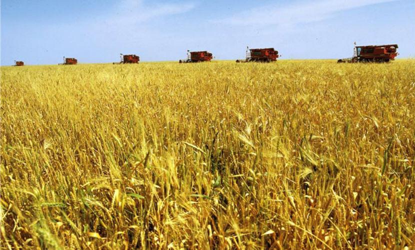 У Крыма, наконец, появилась собственная сельхозтехника