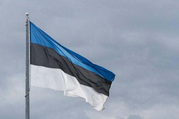 Идею Эстонии о расследовании