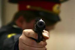Полицейские выстрелили в дебошира, кувалдой громившего авто со своими детьми
