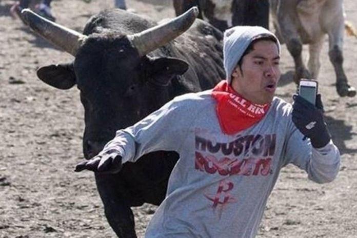 Мужчина погиб, делая селфи с разъяренным быком
