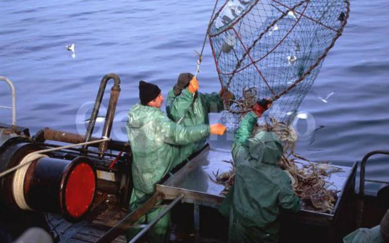 ловля рыбы на дальнем востоке видео
