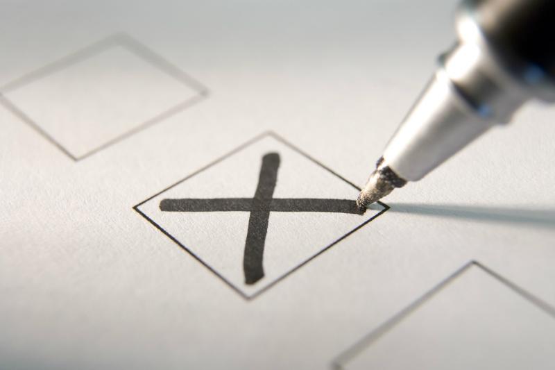 На муниципальных выборах победила графа