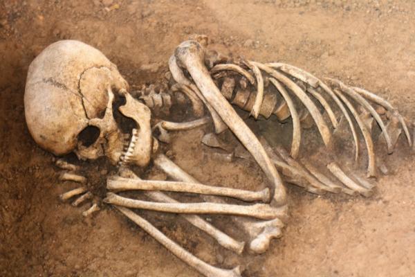 Во время сноса корпуса московского НИИ обнаружен замурованный в стену скелет