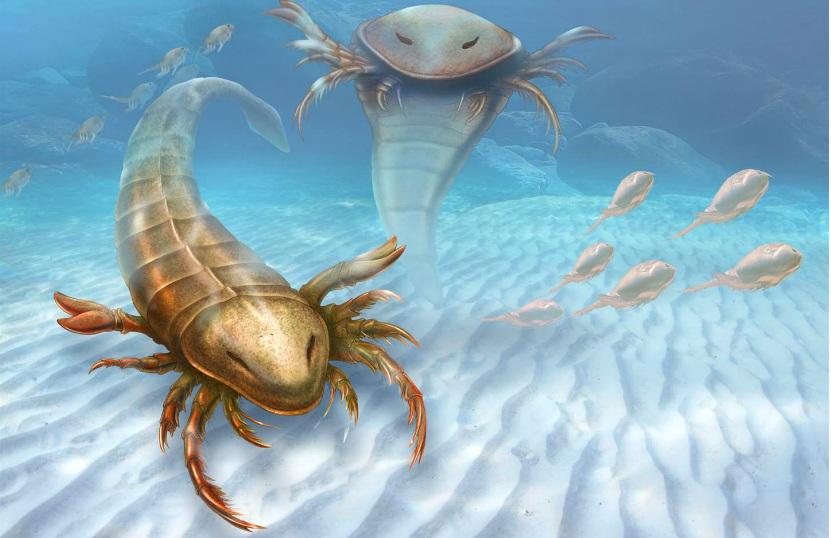 Ученые обнаружили останки гигантского морского чудовища