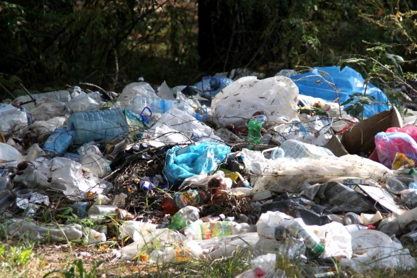 Мать задушила младенца и выбросила возле мусорных баков