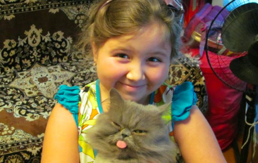 СК просит помощи в поисках убийцы 11-летней Виолетты Токарчук