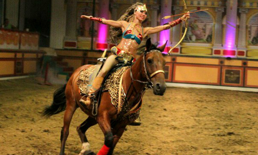 Лошадь насмерть затоптала артистку на цирковом шоу в Абрау-Дюрсо