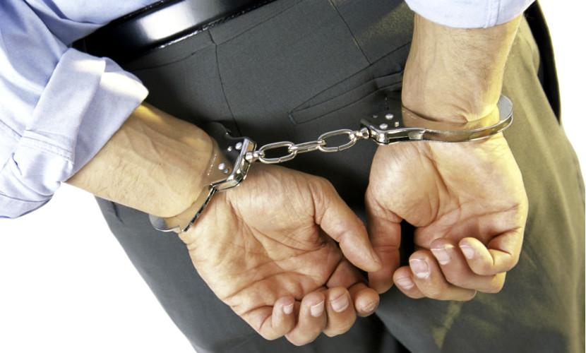 Главарь международной банды наркоторговцев задержан в Подмосковье