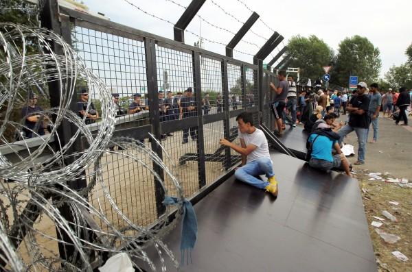 Венгрия и Словения отгородились от Хорватии из-за потока беженцев
