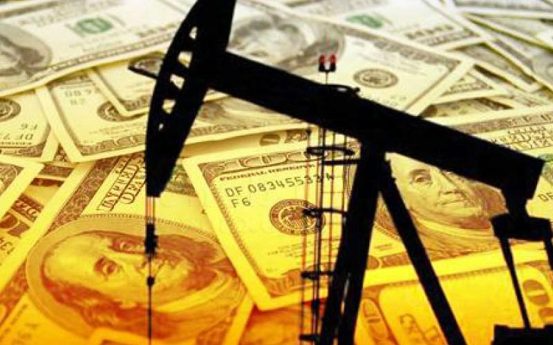 Влияние ливийского кризиса на международный нефтяной рынок сильно беспокоит ОПЕК